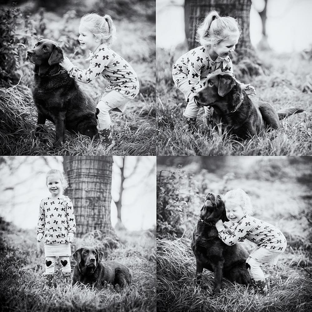 Huisdierenfotografie
